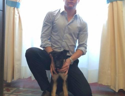 Intervista a Niklas Lindahl – CEO di Optimized Group